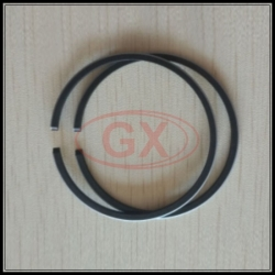 40HP Piston Ring